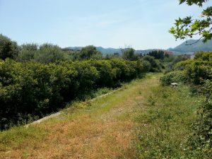 massicciata troncone ferr. lato L. d. Vinci - 23-04-2015- 4jpg